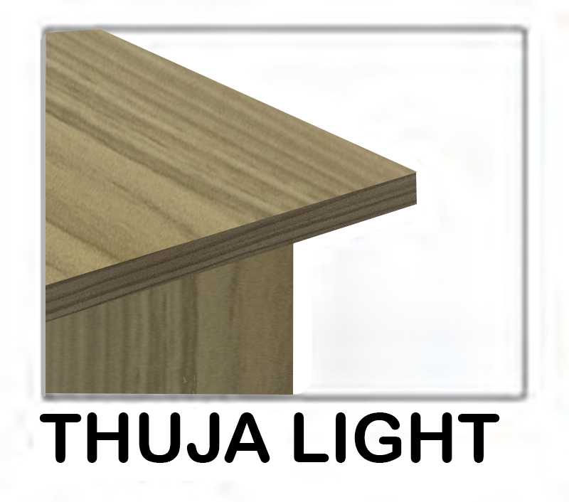 thuja light