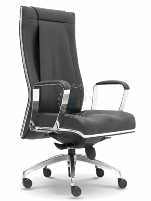 Director Chair